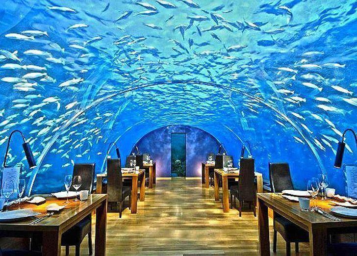 обед под водой на Мальдивах