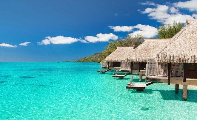 Мечтаешь поехать на Мальдивы бесплатно? Мы знаем как