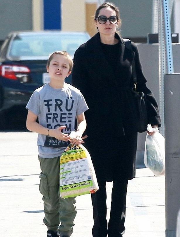 Продолжает шокировать: Анджелину Джоли осудили за приобретенного опасного питомца для детей
