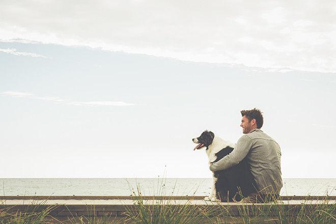 Как одна книга о собаке заставляет переосмыслить жизнь