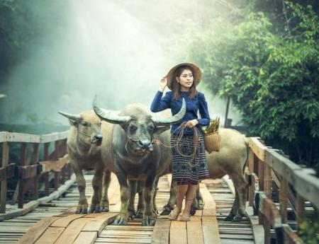 Такой разный Китай: что посмотреть в Поднебесной?