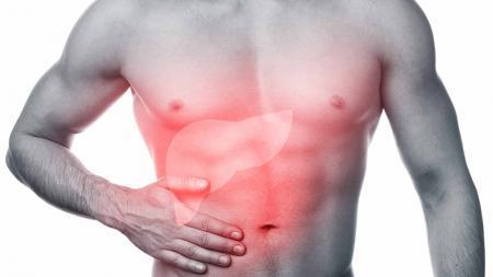Почему болит печень и что с этим делать? Самые распространенные болезни печени
